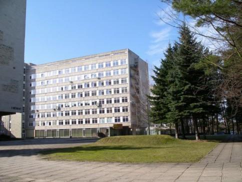 Šį kalnelį prie Vilniaus universiteto Teisės fakulteto buvome praminę gerbiamo konstitucinės teisės dėstytojo vardo aukų kalneliu.