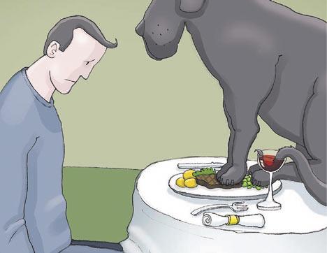 Depresija neretai vadinama juodu šunimi. Dideliu ir griaunančiu viską gyvenime, įskaitant norą bendrauti, valgyti, judėti ir.. gyventi.